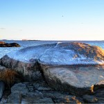 Chaffinch Island- Ice capped rock and Faulkner's Light in background