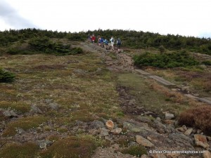 Heading up and over to the Mt. Clinton trail to the Mizpah Spring Hut